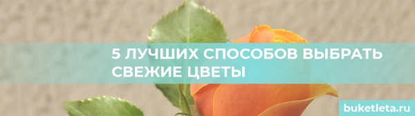 5 лучших способов выбрать свежие цветы